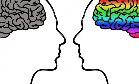 The Brain and Relationship